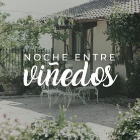 NOCHE ENTRE VIÑEDOS