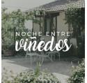NOCHE ENTRE VIÑEDOS  (1 NOCHE)